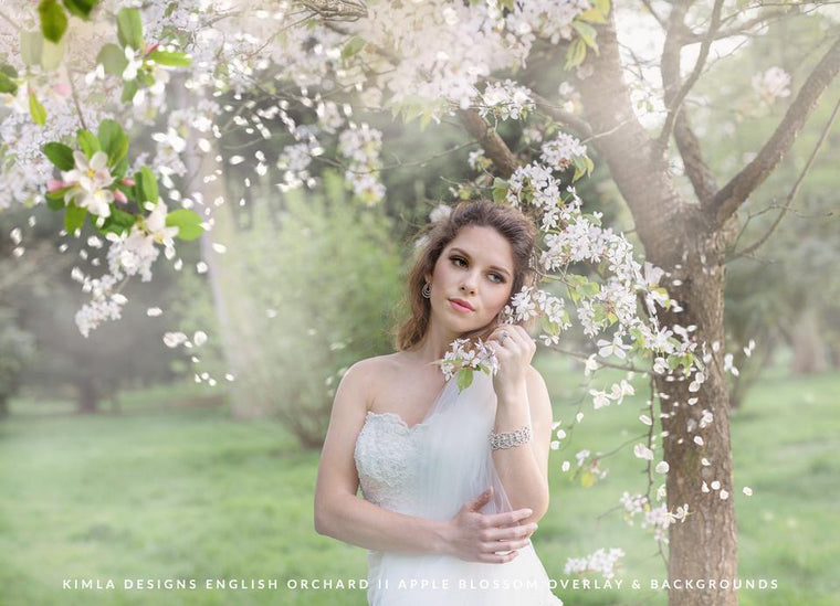 English Orchard vol. 2 Apple Blossom Overlays + Free Gift - Photoshop Overlays, Digital Backgrounds and Lightroom Presets