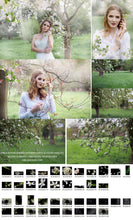 Load image into Gallery viewer, English Orchard vol. 2 Apple Blossom Overlays + Free Gift - Photoshop Overlays, Digital Backgrounds and Lightroom Presets