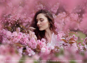 English Orchard vol. 2 Cherry Blossom Overlays + Free Gift - Photoshop Overlays, Digital Backgrounds and Lightroom Presets