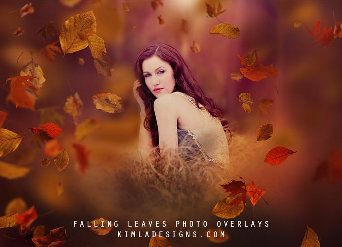 Falling Leaves Photo Overlays - Photoshop Overlays, Digital Backgrounds and Lightroom Presets
