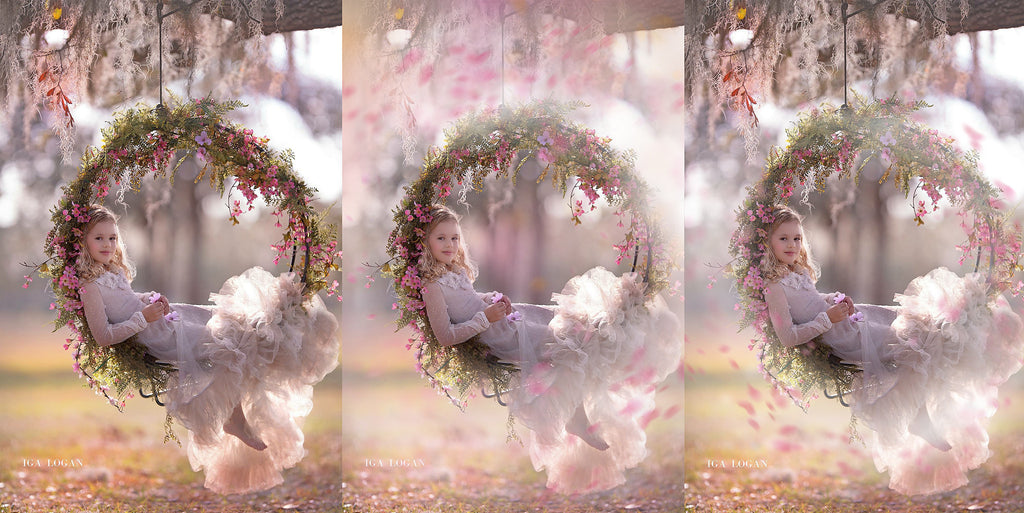 Floral Dreams Painted Photo Overlays