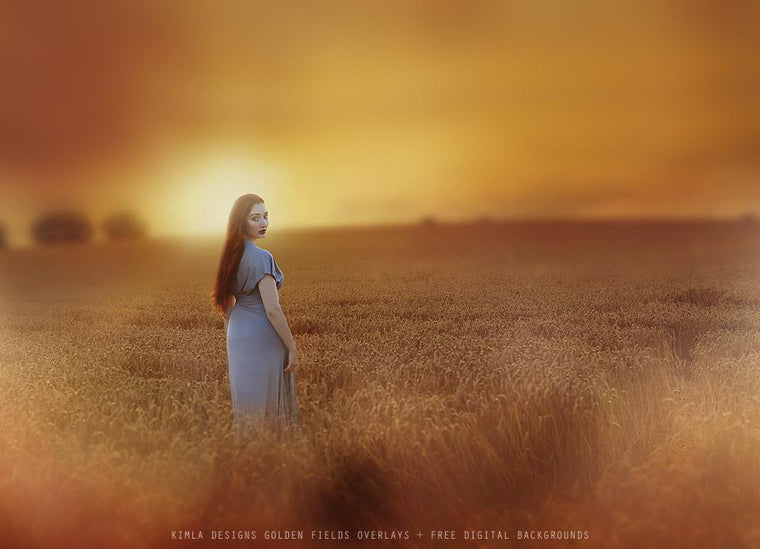 Golden Fields Photo Overlays + Free Gift - Kimla Designs  Quality Editing Tools for Creative Photographers, Photoshop Overlays, Textures, Photoshop Actions and Templates.
