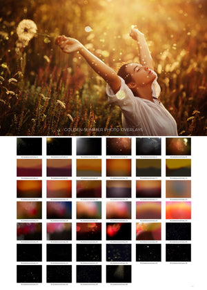 Golden Summer Photo Overlays - Photoshop Overlays, Digital Backgrounds and Lightroom Presets