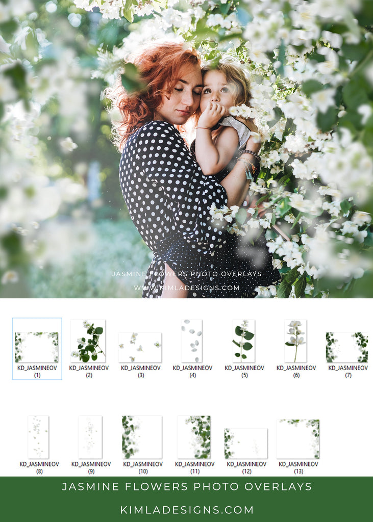 Jasmine Flowers Photo Overlays - Photoshop Overlays, Digital Backgrounds and Lightroom Presets