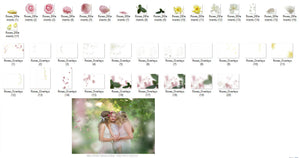 English Garden - Rose Overlays - Photoshop Overlays, Digital Backgrounds and Lightroom Presets
