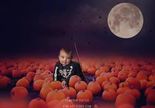 Load image into Gallery viewer, Pumpkin Patch Digital Backdrops & Overlays - Photoshop Overlays, Digital Backgrounds and Lightroom Presets