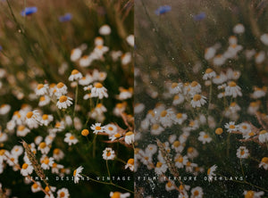 Vintage Film Texture Overlays - Photoshop Overlays, Digital Backgrounds and Lightroom Presets