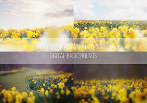 Daffodils Photo Overlays + Free Gift - Kimla Designs  Quality Editing Tools for Creative Photographers, Photoshop Overlays, Textures, Photoshop Actions and Templates.