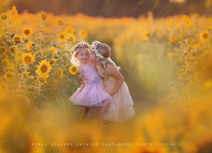 Painted Sunflowers Photo Overlays - Photoshop Overlays, Digital Backgrounds and Lightroom Presets