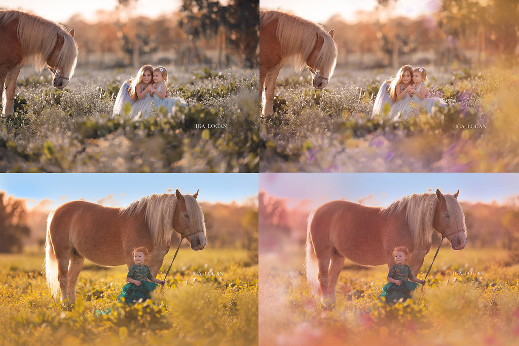 Painted Meadow Photo Overlays - Photoshop Overlays, Digital Backgrounds and Lightroom Presets