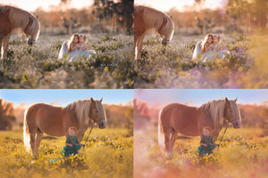 Painted Meadow Photo Overlays - Kimla Designs  Quality Editing Tools for Creative Photographers, Photoshop Overlays, Textures, Photoshop Actions and Templates.