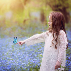 Butterfly Wish Photo Overlays vol.1 - Photoshop Overlays, Digital Backgrounds and Lightroom Presets