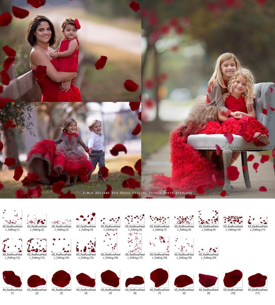 Valentine's Day Bundle, Red Rose Petals and White Feather Overlays