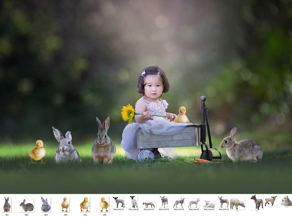 Spring Babies Animal Overlays - Photoshop Overlays, Digital Backgrounds and Lightroom Presets