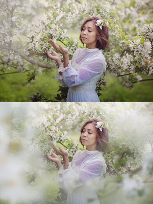 Shooting Through Blossom Overlays - Kimla Designs  Quality Editing Tools for Creative Photographers, Photoshop Overlays, Textures, Photoshop Actions and Templates.