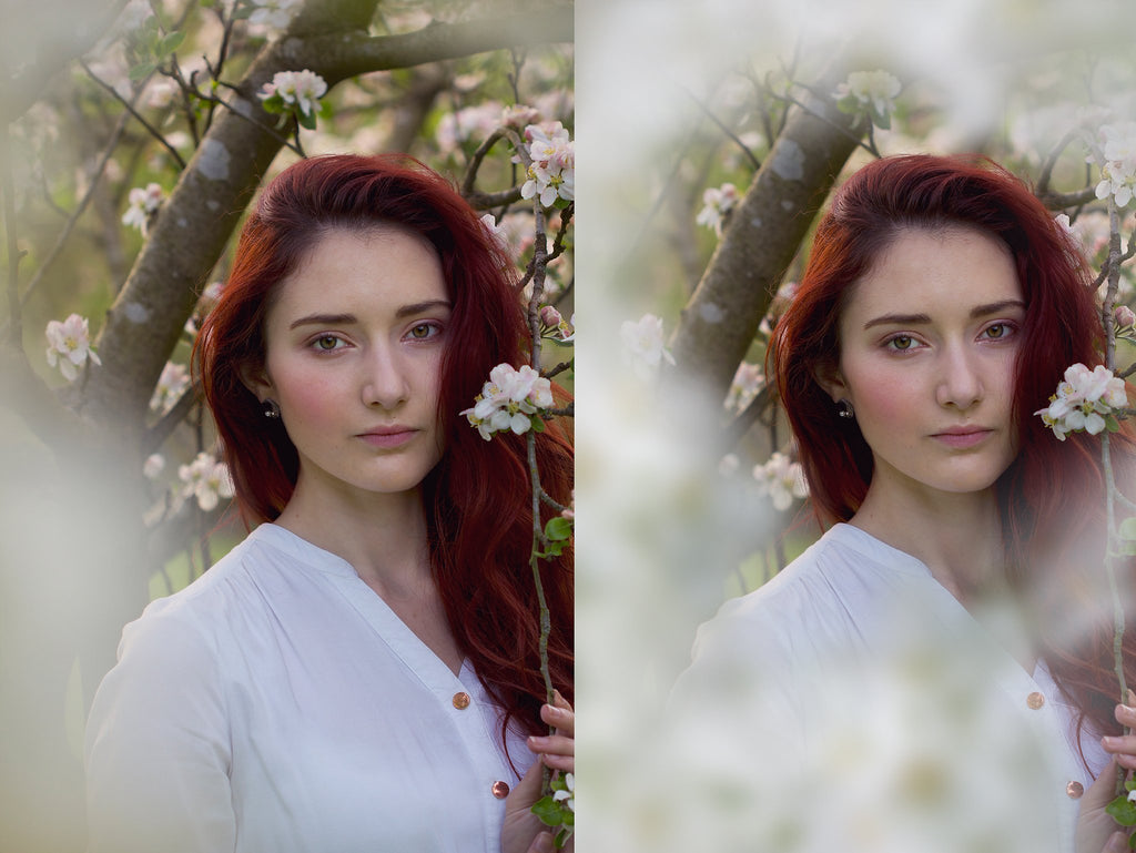Shooting Through Blossom Overlays - Photoshop Overlays, Digital Backgrounds and Lightroom Presets