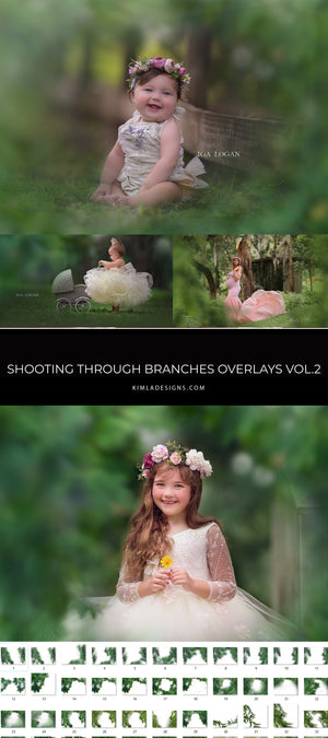 Shooting Through Branches Overlays vol.2 - Photoshop Overlays, Digital Backgrounds and Lightroom Presets