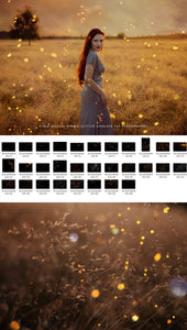Summer Glitter Overlays - Photoshop Overlays, Digital Backgrounds and Lightroom Presets