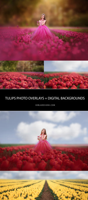 Tulips Photo Overlays + Free Gift - Kimla Designs  Quality Editing Tools for Creative Photographers, Photoshop Overlays, Textures, Photoshop Actions and Templates.
