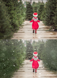 White Winter Overlays and Brushes + 2 Free Gifts - Photoshop Overlays, Digital Backgrounds and Lightroom Presets