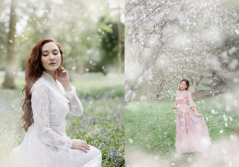 White Blossom Photo Overlays