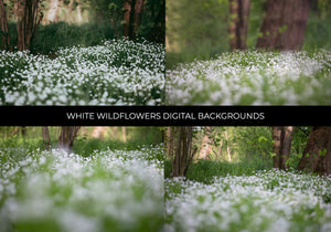 White Wildflowers Composite Photography Set - Photoshop Overlays, Digital Backgrounds and Lightroom Presets