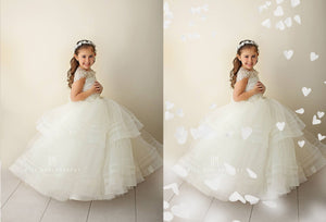 White Heart Confetti Photo Overlays - Photoshop Overlays, Digital Backgrounds and Lightroom Presets