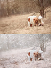 Load image into Gallery viewer, White Winter Overlays and Brushes + 2 Free Gifts - Photoshop Overlays, Digital Backgrounds and Lightroom Presets