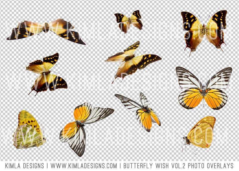 Butterfly Wish Photo Overlays vol2 - Kimla Designs  Quality Editing Tools for Creative Photographers, Photoshop Overlays, Textures, Photoshop Actions and Templates.