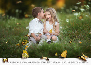 Butterfly Wish Photo Overlays vol2 - Photoshop Overlays, Digital Backgrounds and Lightroom Presets