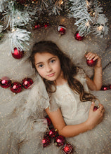 Load image into Gallery viewer, Christmas Glitter Photo Overlays