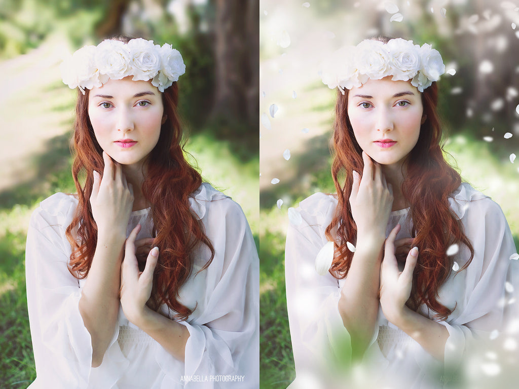 White Blossom Photo Overlays - Photoshop Overlays, Digital Backgrounds and Lightroom Presets