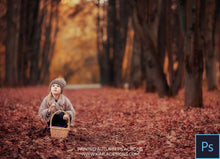 Load image into Gallery viewer, Painted Autumn PS Actions + Free Gift - Photoshop Overlays, Digital Backgrounds and Lightroom Presets