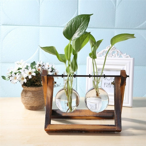 Glass and Wood Vase Planter Terrarium Table Desktop Hydroponics Plant