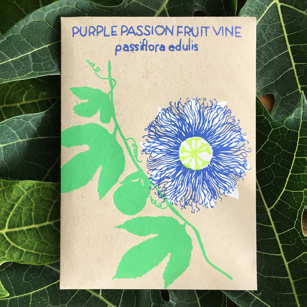 Purple Passionfruit Vine (Passiflora edulis) 20 seeds