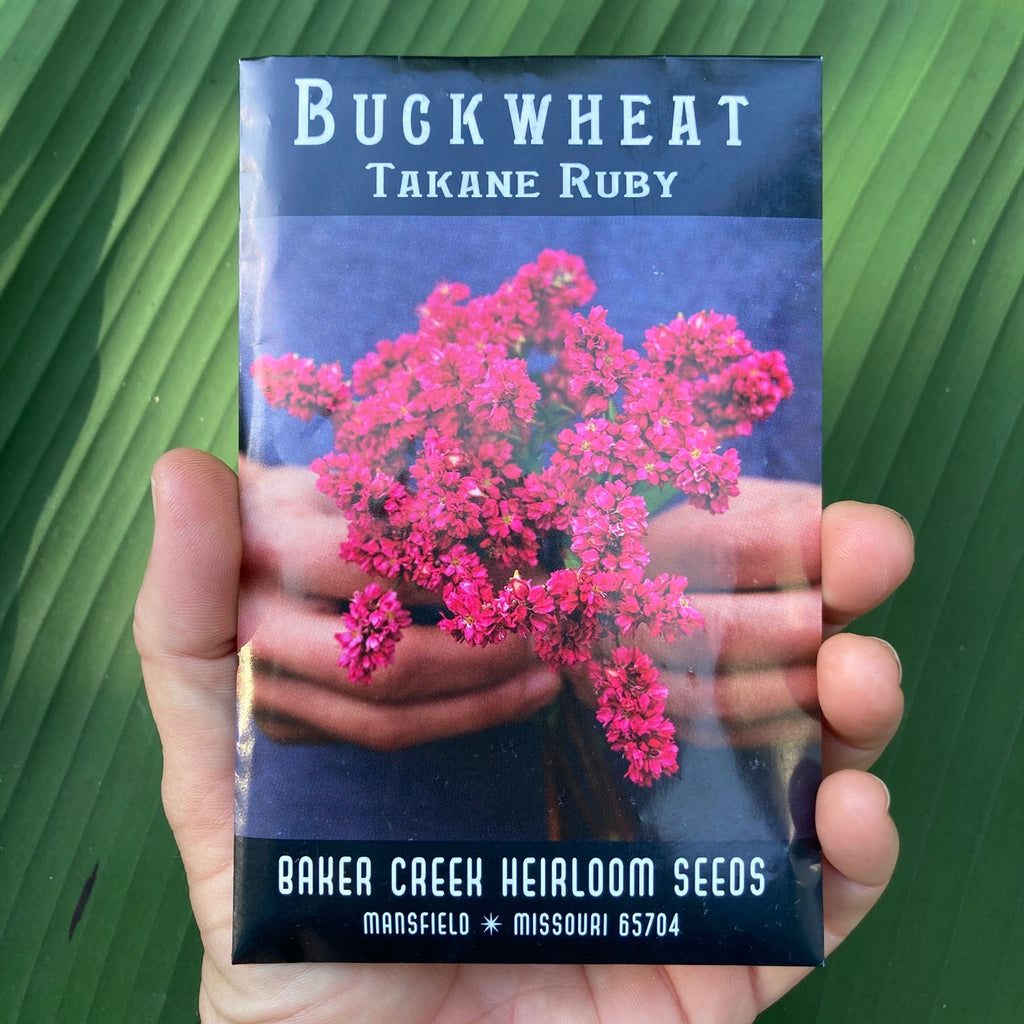 Takane Ruby Buckwheat Seed Packet