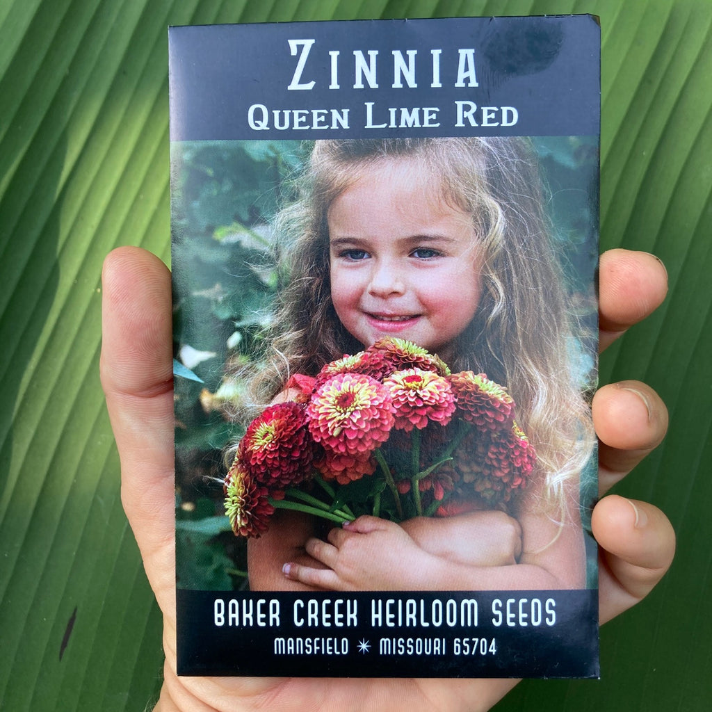 Queen Red Lime Zinnia Seed Packet