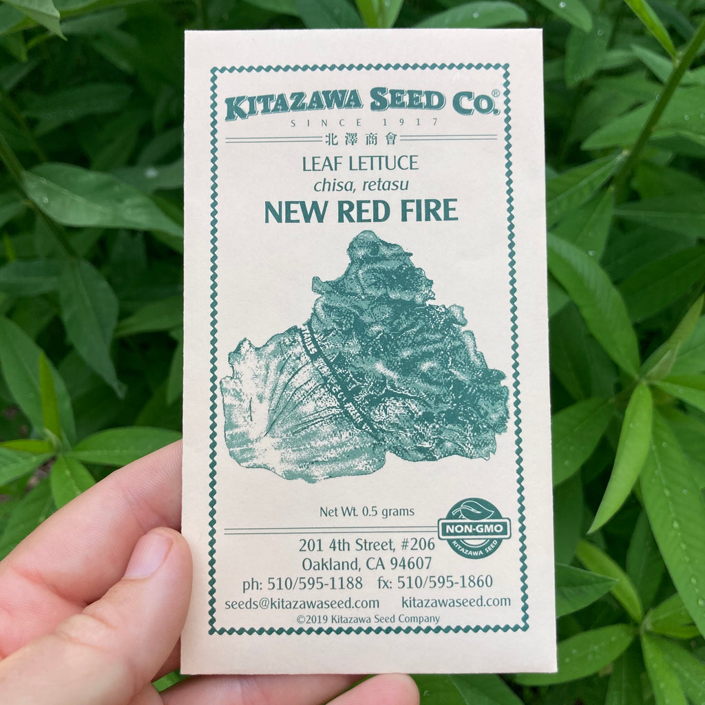 New Red Fire Lettuce Seed Packet