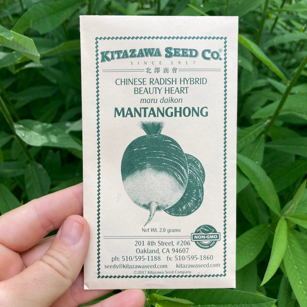 Mantanghong Watermelon Red Meat Radish Seed Packet