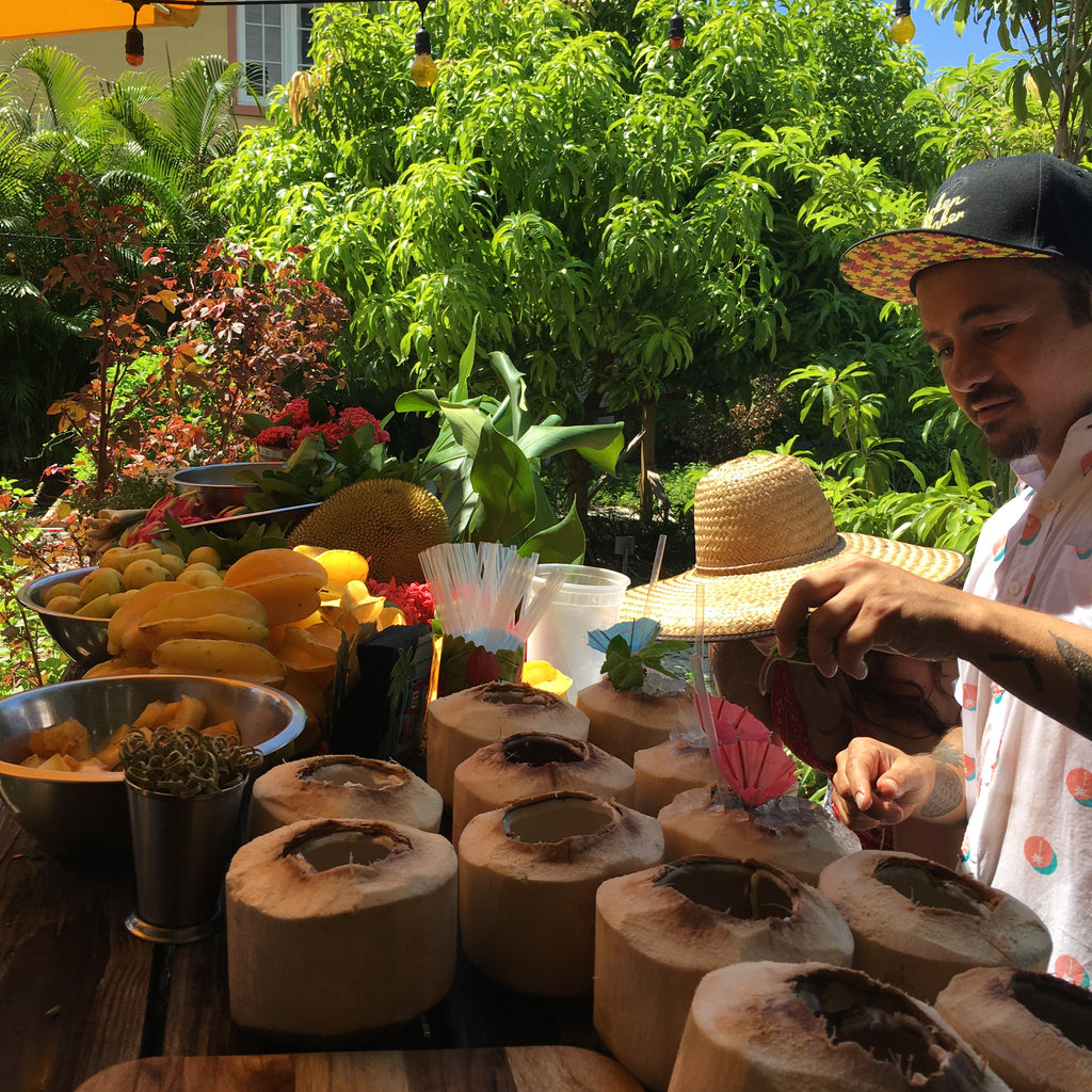 Make your own Garden Bitters and Tropical Shrub with Gabe Orta from Bar Lab, Sunday February 18th