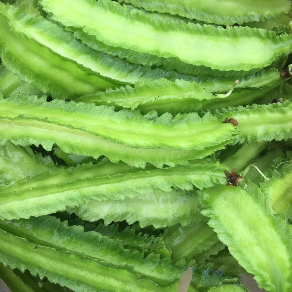 Winged Bean, Day Neutral (psophocarpus tetragonolobus) 20 seeds