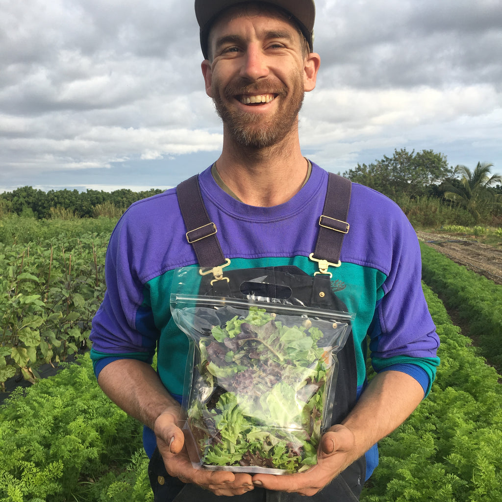 French Farms Salanova Lettuce Mix, 1/2 pound bag, pickup at our cooler in Biscayne Park