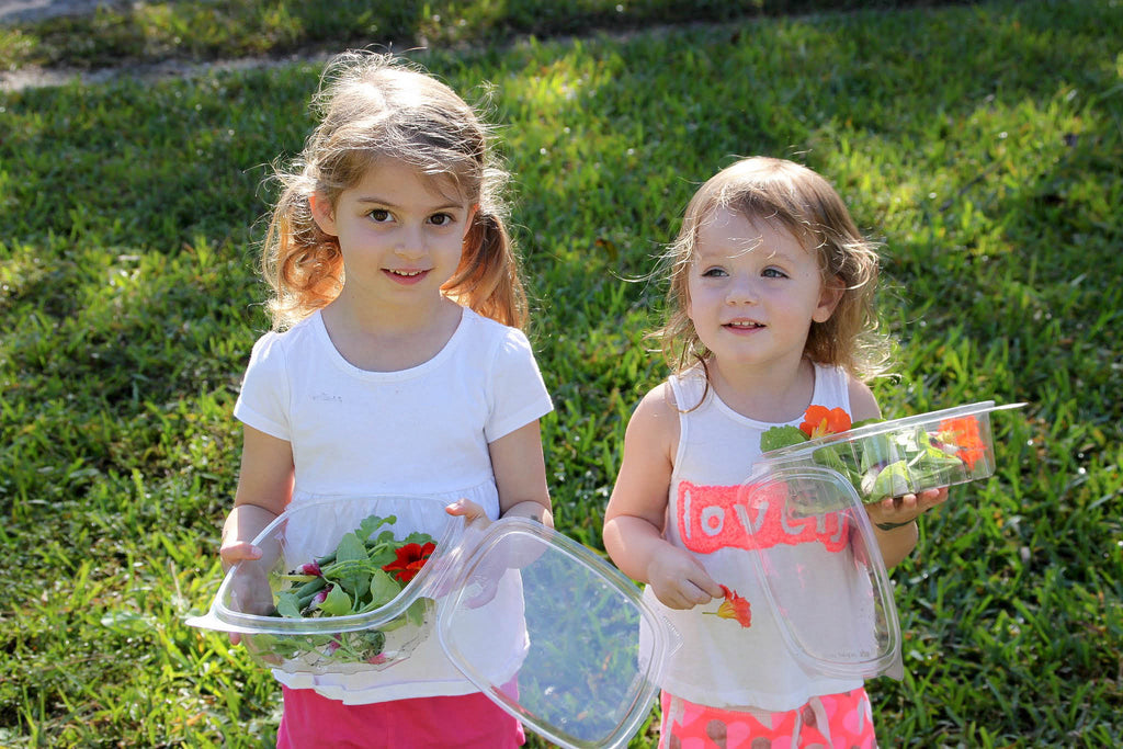 Kids Farm Workshop, Sunday April 9th