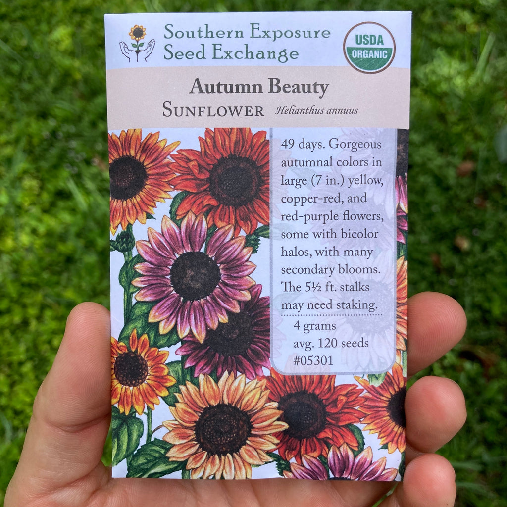 Autumn Beauty Sunflower Seed Packet