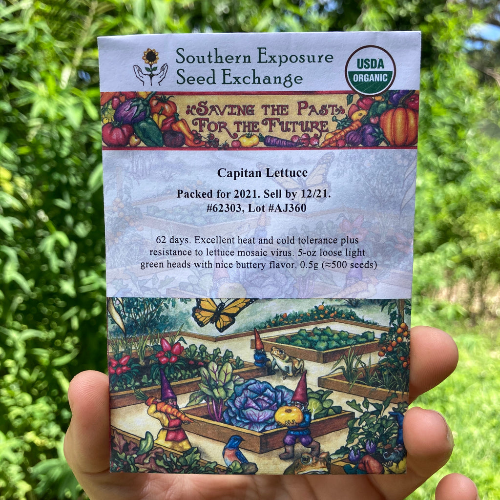 Capitan Butterhead Lettuce Seed Packet