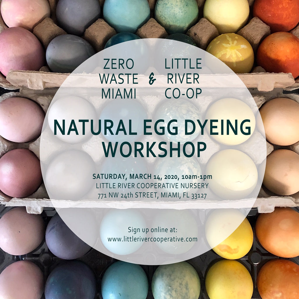 Natural Egg Dying Workshop with Carrie Sieh, March 14th