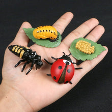 Load image into Gallery viewer, Animal and bug shaped toys for kids.