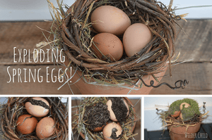 How to Make Exploding Spring Eggs