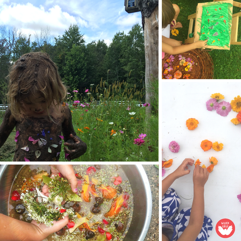Plant and create an incredible wildflower meadow for the kids