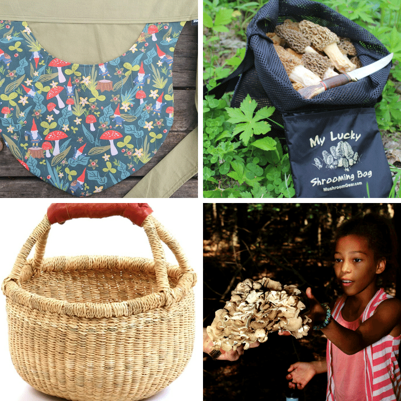 Foraging gifts kids